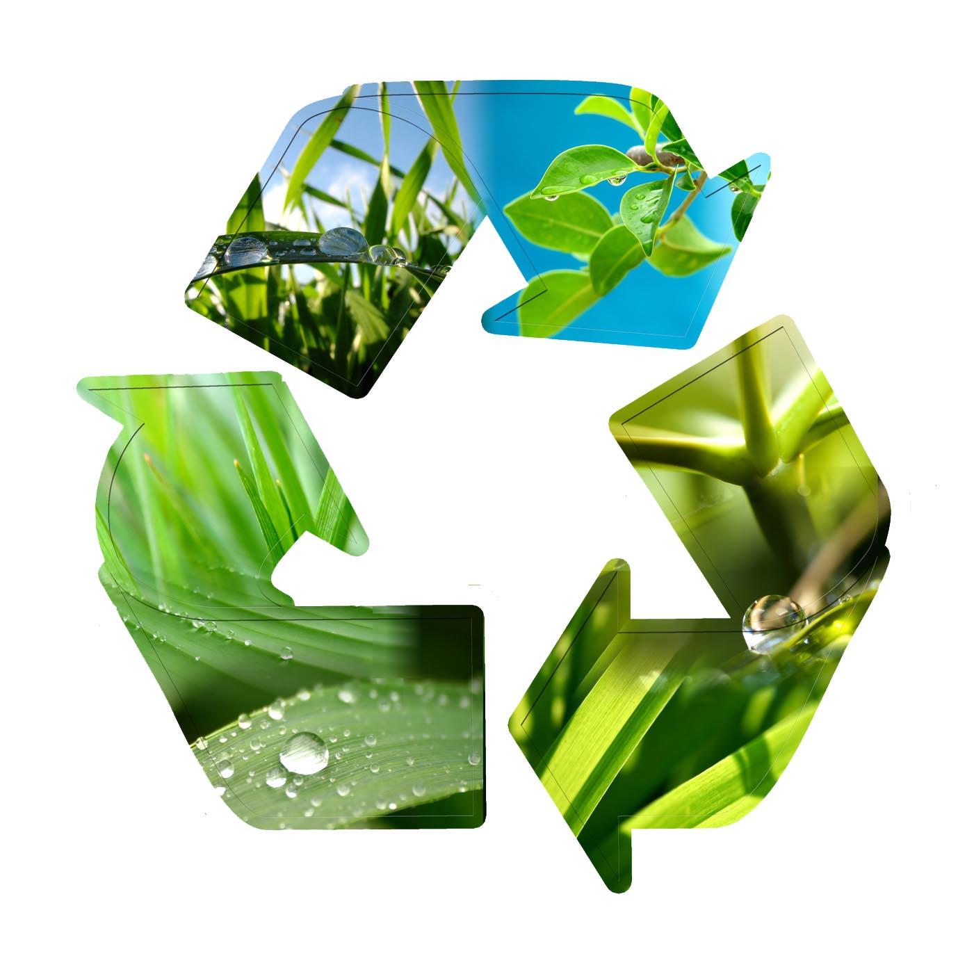 La RC et l'environnement